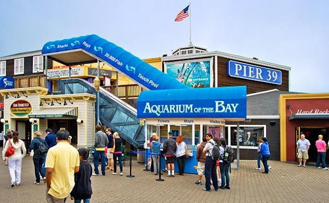 Informações sobre o Aquarium of the Bay