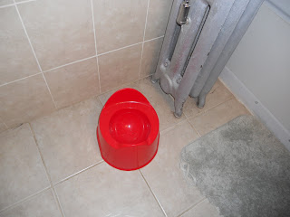 red IKEA potty