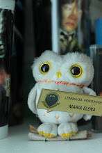 Message from Mr Owl