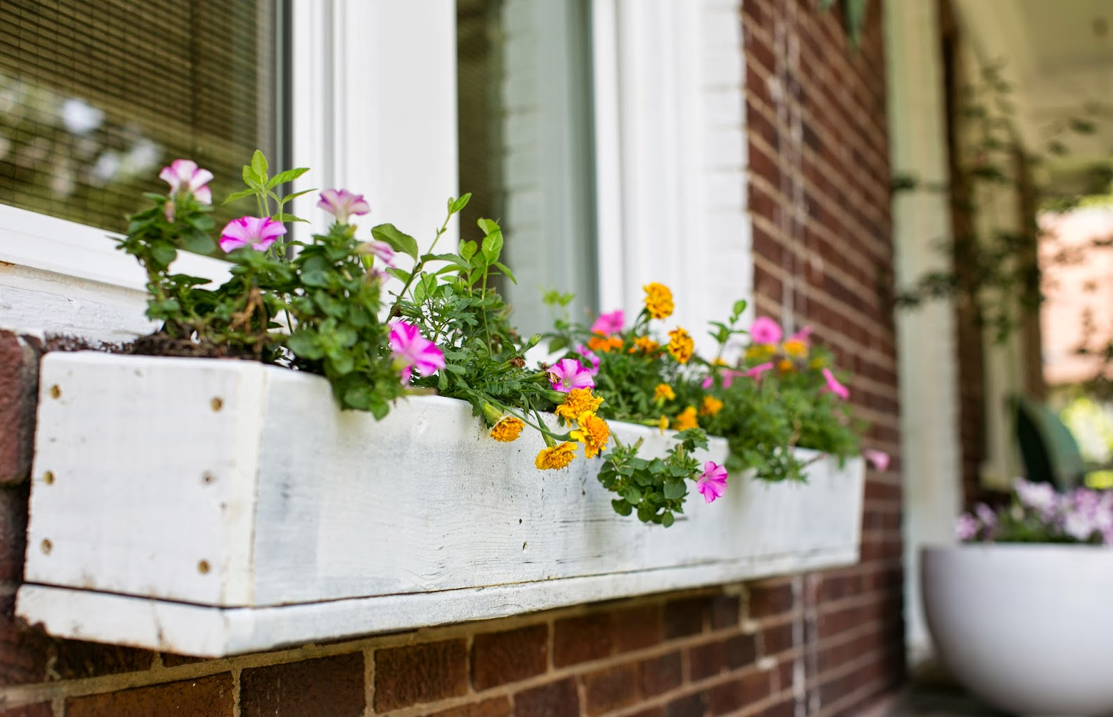 DIY white window boxes