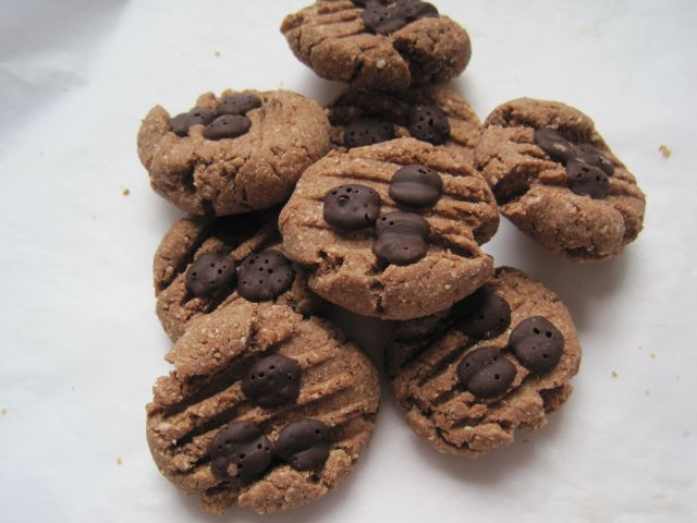 Meat free everyday low carb choc chip cookies for Atkins cuisine baking mix substitute