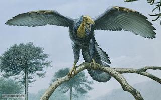 evolucion de las aves, vuelo, archaeopteryx, origen del vuelo