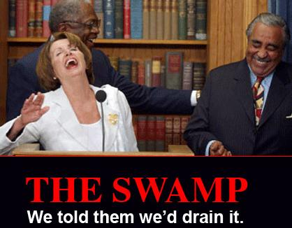 pelosi swamp lady