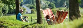 Landal Ferienhaus Sommer