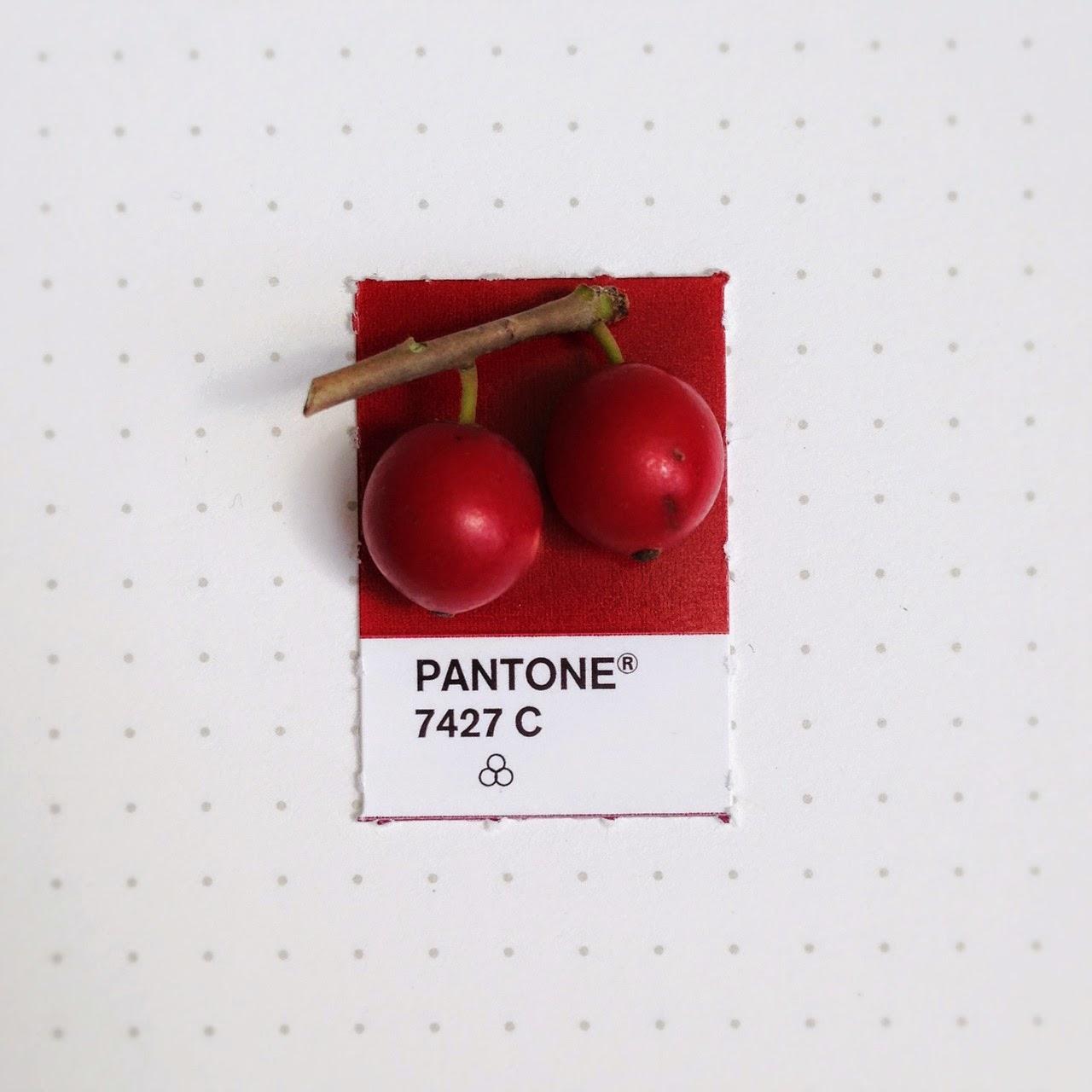 Modern Paint Colors Pantone Color