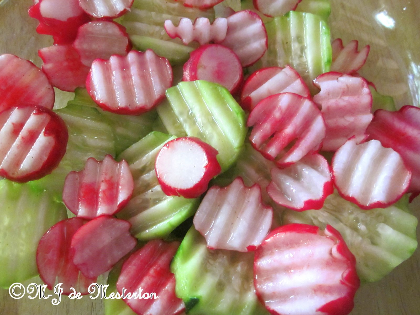 Elegant Radishes and Cucumbers