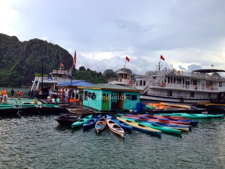 Majestic Beauty of Ha Long Bay - pic10