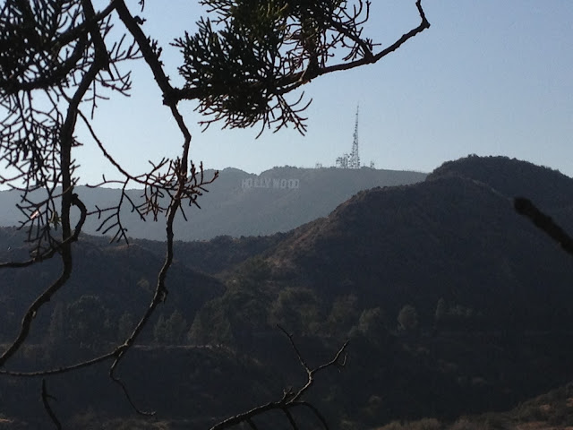 Hollywood sign from Griffith Park by Rachel Medanic