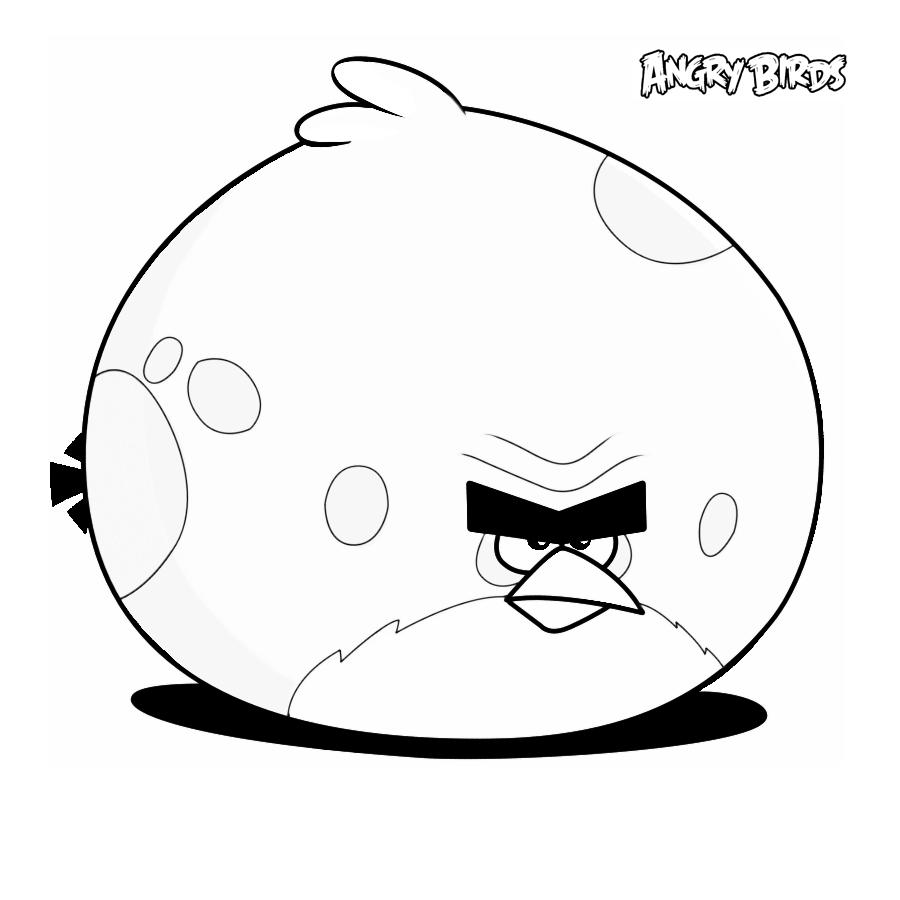 Angry birds imagenes para colorear - Imagui
