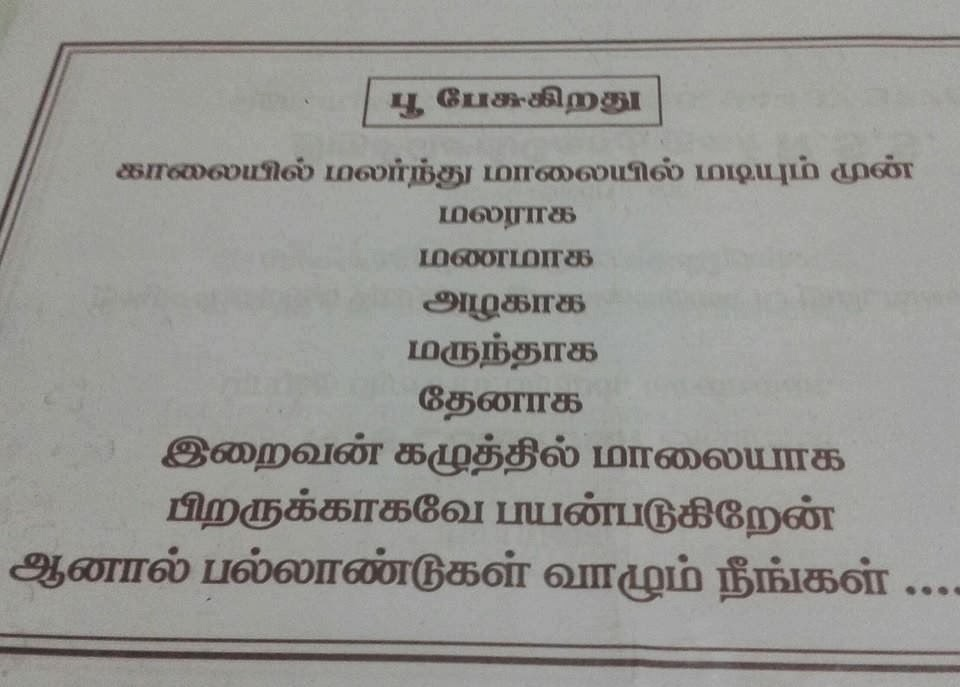 Tamil kavithai super sms latest kavithai message valkai thathuvam love