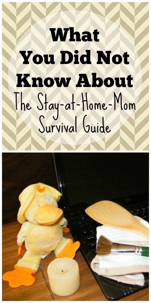 Answering your questions-What You Did Not Know About The Stay-at-Home Mom Survival Guide plus 3rd blog anniversary celebrations with giveaways every day!