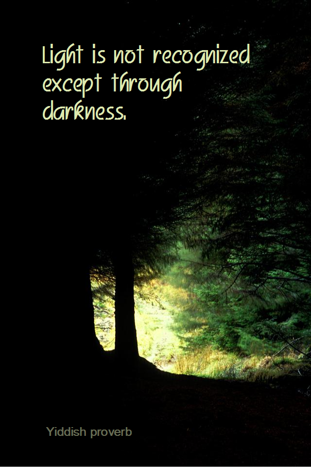 visual quote - image quotation for PERSPECTIVE - Light is not recognized except through darkness. - Yiddish proverb