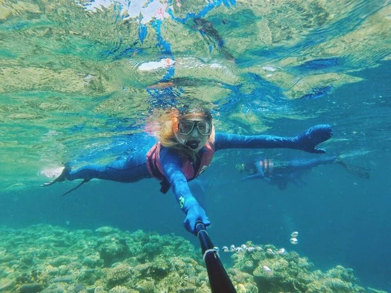 Great Barrier Reef & Hartley's Crocodile Farm - Cairns, Australia ♡