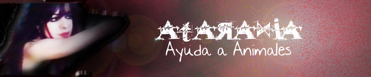 ATARAXIA AYUDA ANIMALES