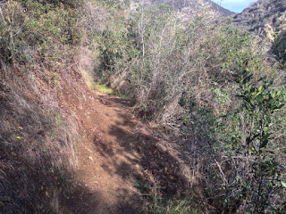 First sun on Fish Canyon Trail, Angeles National Forest