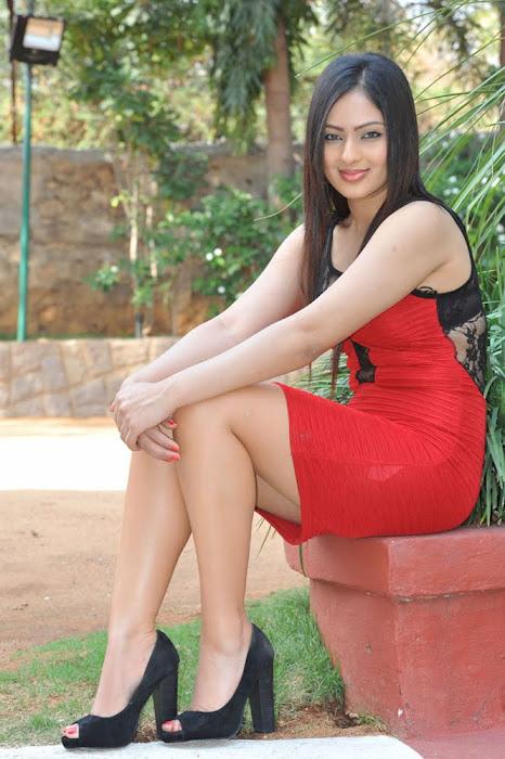 nikesha patel new unseen pics