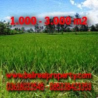 Tanah Murah di Ubud Bali