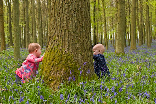 Babies and children playing in blubell woods