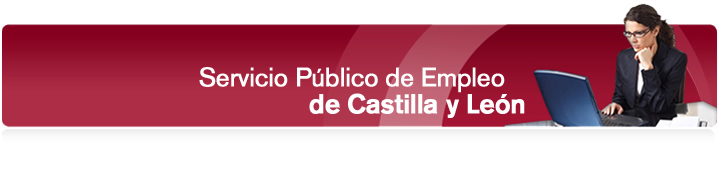 Castrillo de la vega ayudas y subvenciones al empleo for Oficina empleo castilla y leon