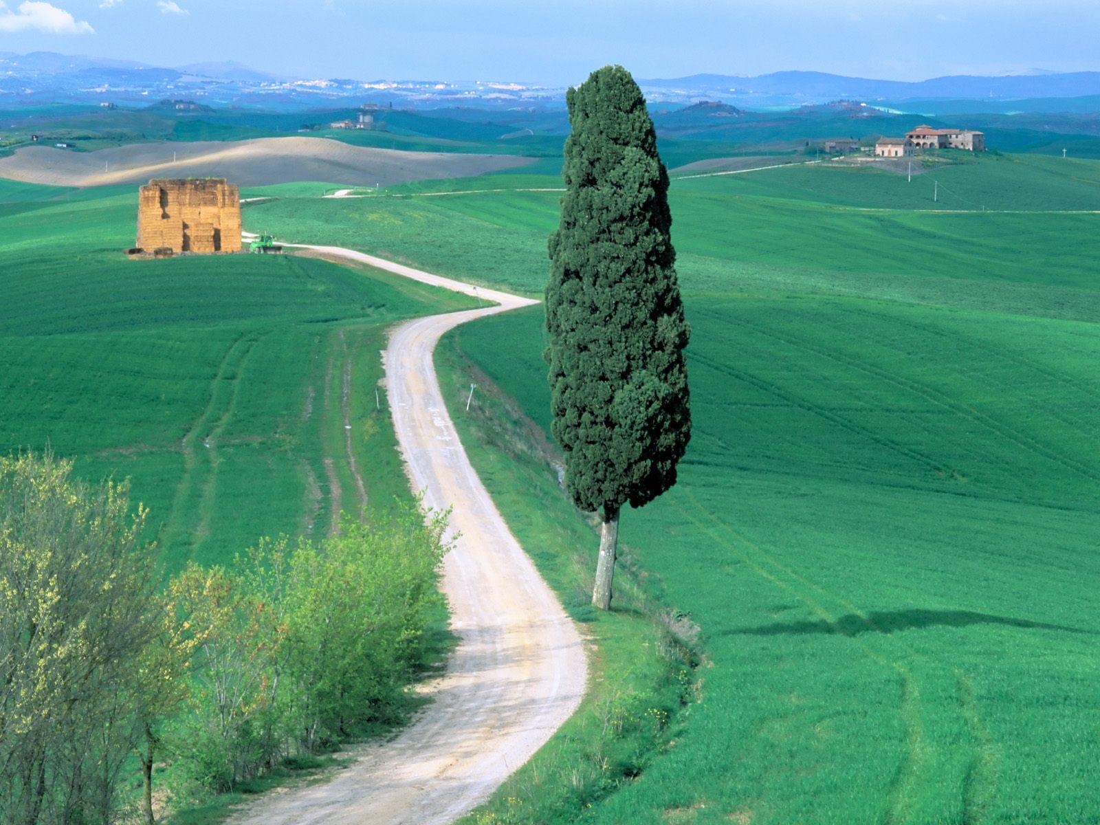http://1.bp.blogspot.com/-9OEkyqGxSUU/Tcp3SVdHdtI/AAAAAAAACW0/Q6QTQVTKPTM/s1600/Country+Road%252C+Tuscany%252C+Italy.jpg