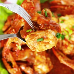 malaysian style chili flower crab season with spice asian main dish