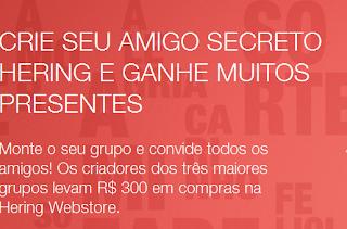 """Promoção  """"Amigo Secreto"""" -  Hering"""