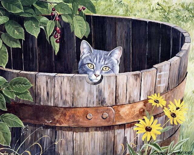 кот в бочке