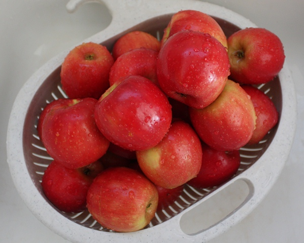 How To Dehydrate Apples recipe by Barefeet In The Kitchen