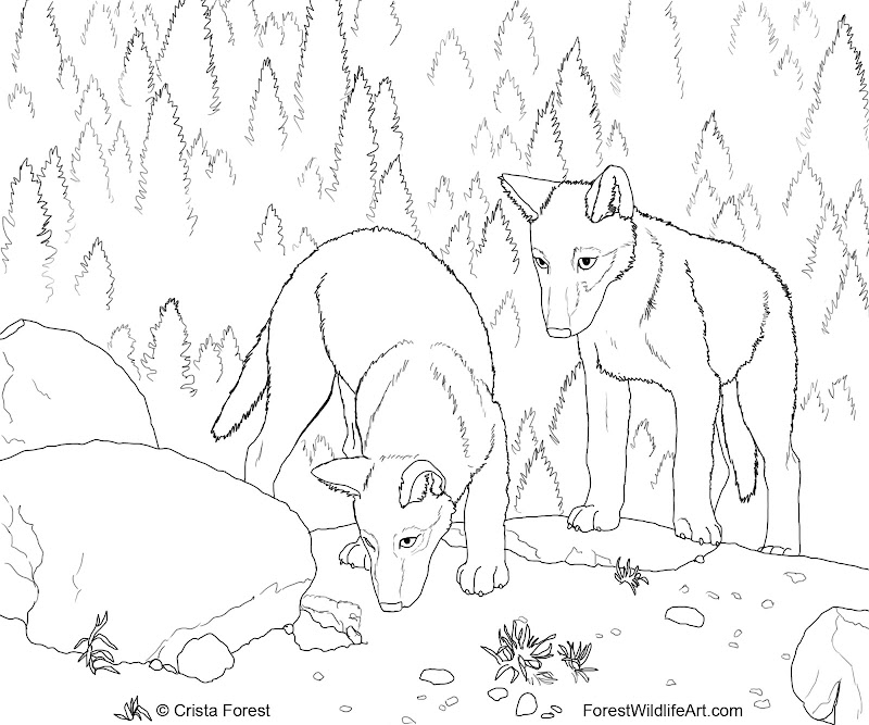 intricate wolf pup coloring pages - photo#1