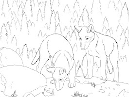 Pictures Of Coloring Book Pages Of Cute Foxes