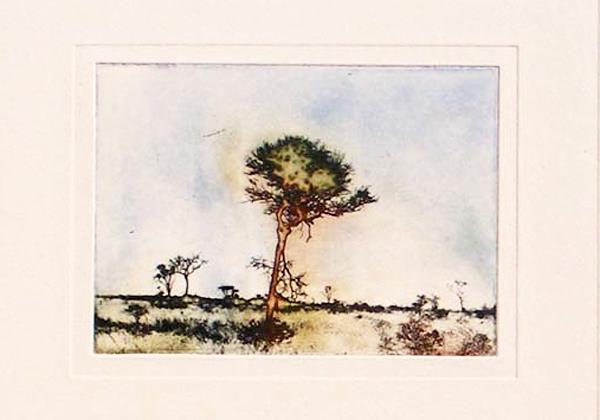 Braam Van Wijk etching