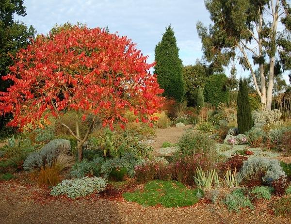 Passeggiare tra parchi giardini e castelli il giardino - Angoli di giardino ...