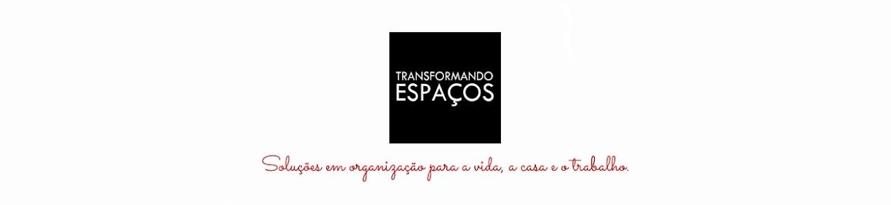 Transformando Espaços-Personal Organizer