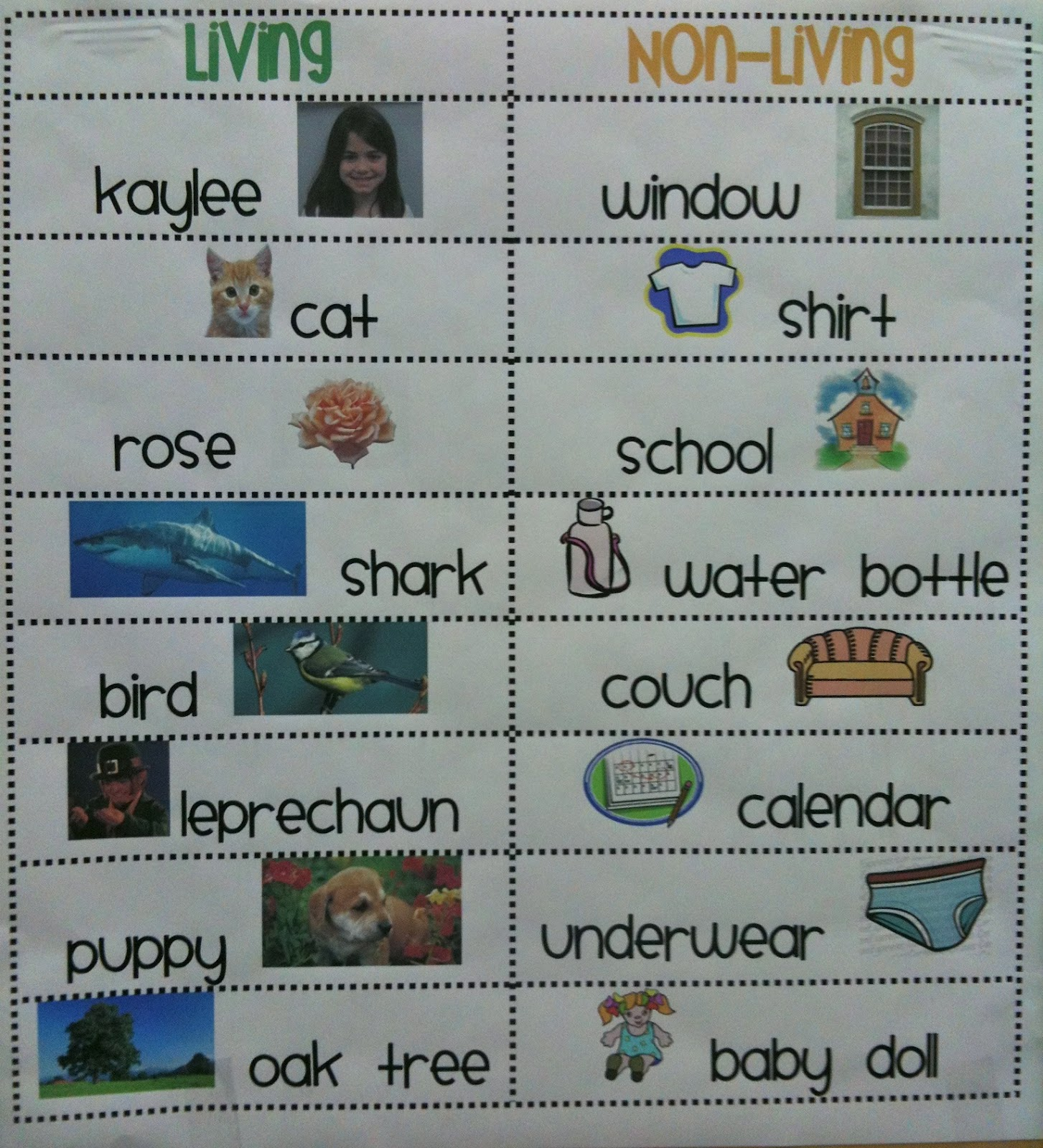 living and non living things This is a living and nonliving things lesson plan to compliment a unit on living and nonliving things in kindergarten  an online quiz for living and non-living .