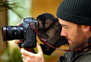Funny Animals With Camera