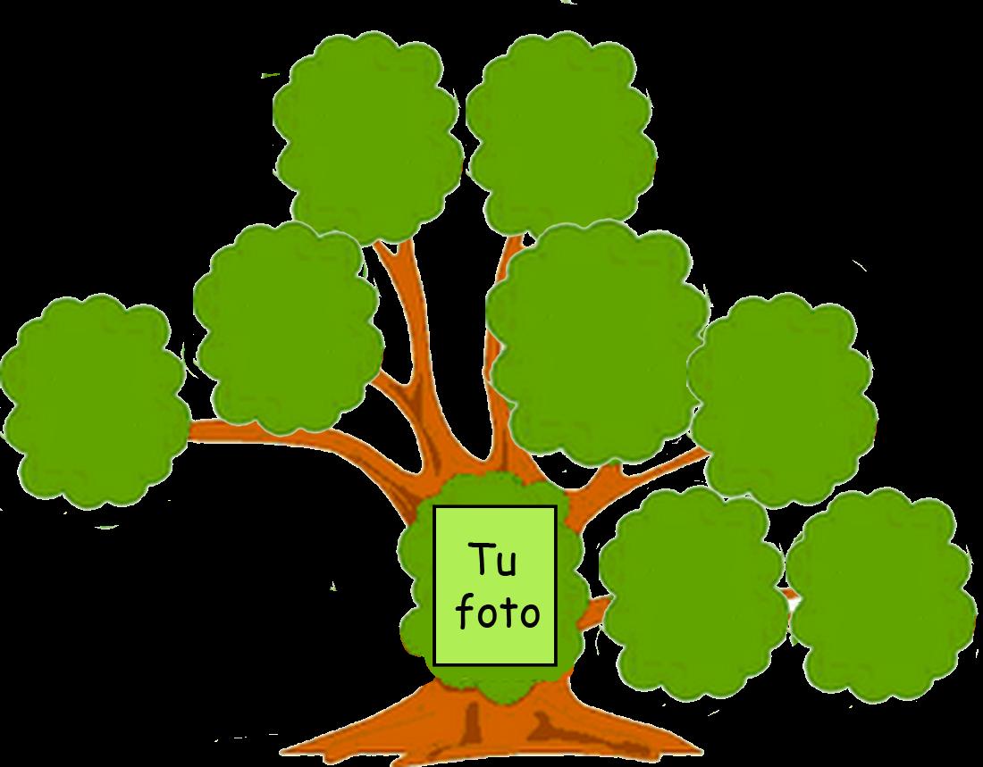 ARBOLES GENEALOGICOS Y DE FAMILIA - heraldico.com