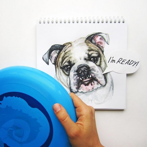 18-Playing-Fetch-Valerie-Susik-Валерия-Суслопарова-Cats-and-Dogs-Interactive-Animal-Drawings-www-designstack-co