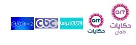مواعيد وقنوات عرض مسلسل حكاية حياة 2013 - للفنانة غادة عبد الرازق