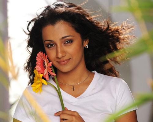 trisha krishnan gopichand shankam movie stills pictures