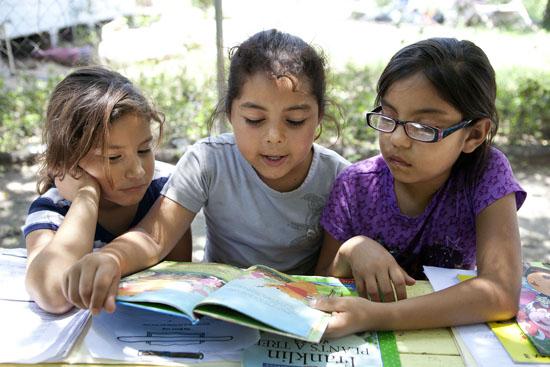My life as a homeschooling teacher: Life: a competitve sport?