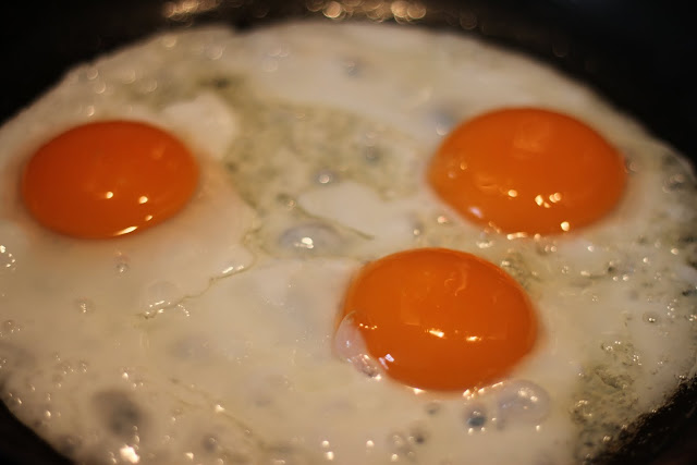 Why Are Eggs Linked to Cancer Progression?