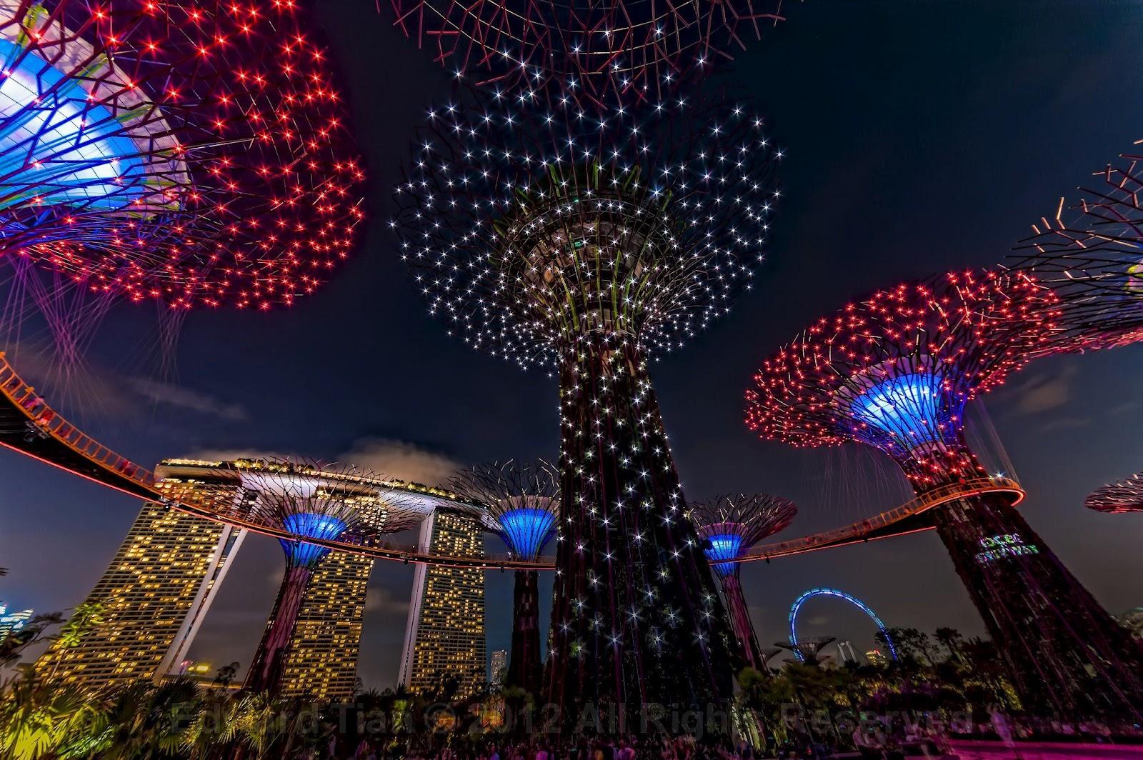 Circuito Singapur : Singapur: inauguraciÓn de los jardines futuristas de la bahia