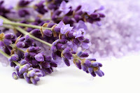 Lavender mask against hair loss