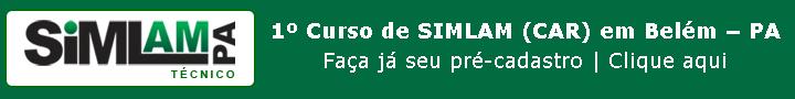 Curso de SIMLAM em Belém - PA