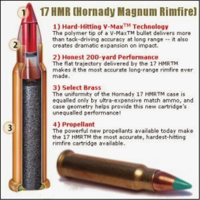 Forum question remington model 597 rifle 17 hmr recall notice
