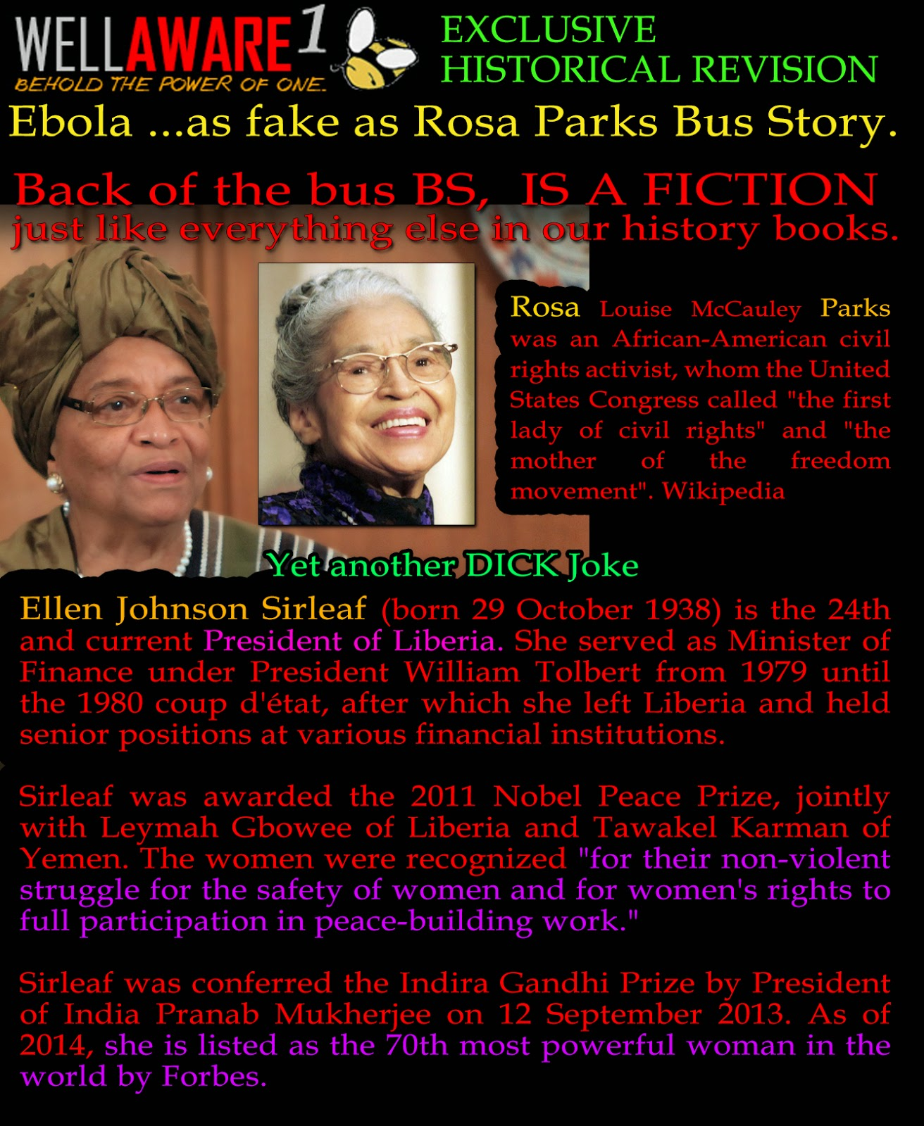 essays on rosa parks biography The author's comments: this is a piece i wrote for my school's newspaper for black history month i chose to write about rosa parks because i was inspired by her and her contribution to the civil rights movement.
