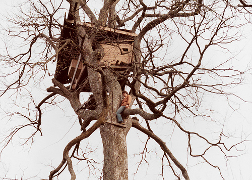 Good ideas for a tree house