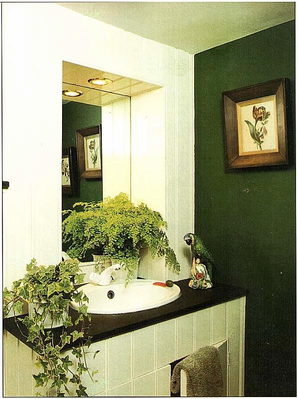 Такие разные растения, как выносливые плющи и Адиантум Венерин волос (Adiantum capillus veneris), могут процветать в ванной