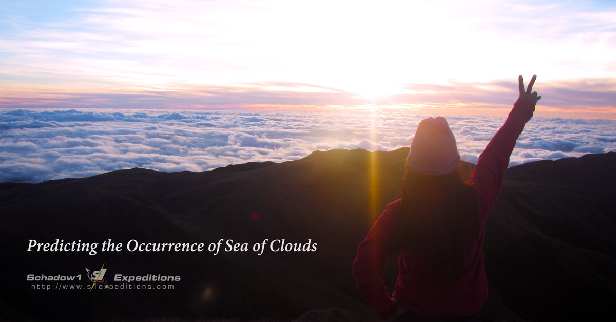Pulag Sea of Clouds - Schadow1 Expeditions