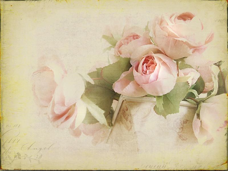 http://1.bp.blogspot.com/-9RdRAp9Lugc/T-F1Y7lNmFI/AAAAAAAAdnw/HgQ6A5o_7pU/s1600/0_993f7_d94a03b_XL.jpg